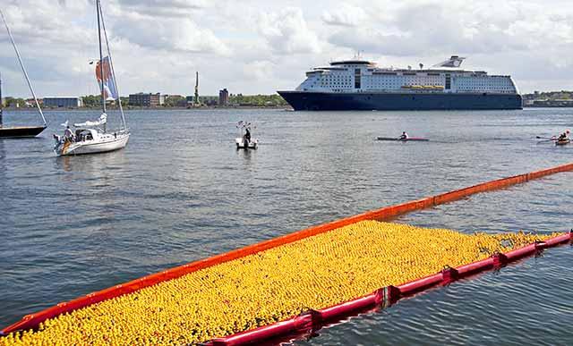 Entenrennen in Kiel