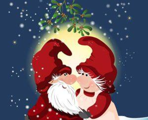 mistelzweig-in-der-weihnachtszeit