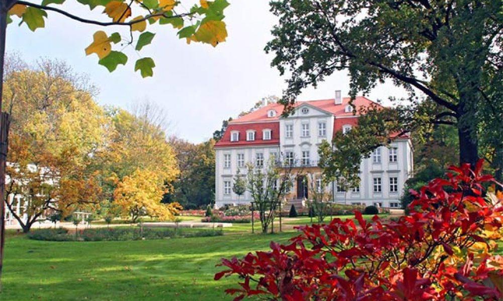 Herbstliches Schloss in Sachsen